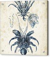 Crustaceans - 1825 - 28 Acrylic Print