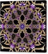 Crystal 613433 Acrylic Print