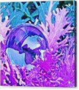 Crystal Ball Project 66 Acrylic Print