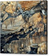 Crystal Cave Marble Sequoia Portrait Acrylic Print