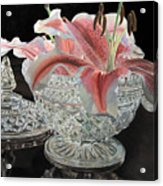 Crystal Stargazer Acrylic Print