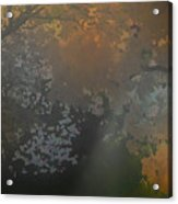 Crystal Tree Top Acrylic Print
