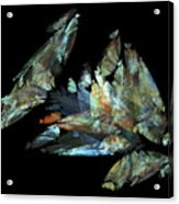 Crystalize Acrylic Print