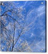 Crystalline Sky Acrylic Print