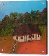 Cuban Tobacco Plantation Acrylic Print