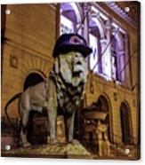 Cubs Lion Hearts Acrylic Print