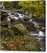 Cullasaja River In Autumn Acrylic Print