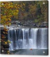 Cumberland Falls In Gold Acrylic Print