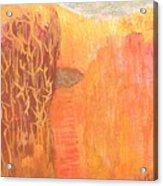 Curious Cove Acrylic Print