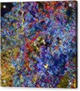 Currant Bush As A Painting Acrylic Print