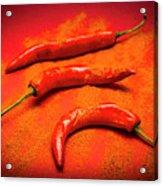 Curry Shop Art Acrylic Print