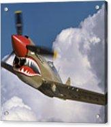 Curtiss P-40n Warhawk Acrylic Print