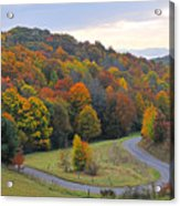 Curve Of Color Acrylic Print