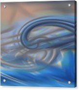 Curved Lines Acrylic Print