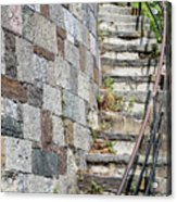 Curved Stone Staircase 235 Acrylic Print