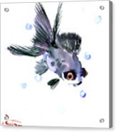 Cute Fish Acrylic Print