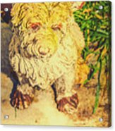 Cute Weathered White Garden Ornament Of A Dog Acrylic Print