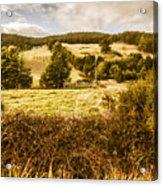 Cygnet Rustic Farming Fields Acrylic Print