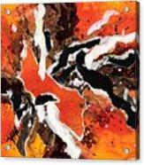 Cyhm Orange Acrylic Print
