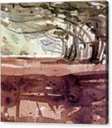 Cypress At Moss Beach Acrylic Print