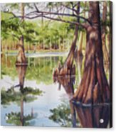 Cypress In Lake Chicot Acrylic Print