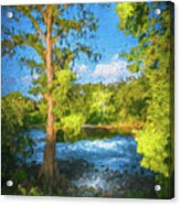 Cypress Tree By The River Acrylic Print