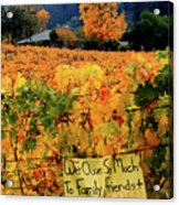 D8b6314 Autumn At Jack London Vinyard With Thanks To Firefighters Ca Acrylic Print