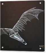 Da Vinci Flying Machine Acrylic Print