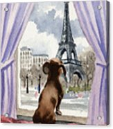 Dachshund In Paris Acrylic Print