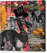 Dada Dodos Acrylic Print
