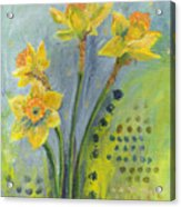 Daffodils II Acrylic Print