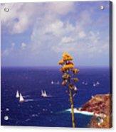Daggers Los Antigua Acrylic Print