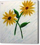 Daisies Acrylic Print