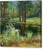 Daisies On The Golf Course Acrylic Print