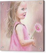 Daisy Acrylic Print by Karen Hull