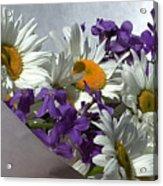 Daisy Mix Acrylic Print