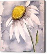 Daisy Modern Poster Print Fine Art Acrylic Print