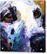 Dalmatian Dog Painting Acrylic Print