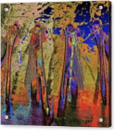 Damsel Fly In The Burning Rainforest Acrylic Print