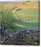 Danby Dale Countryside Acrylic Print