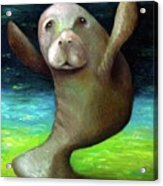 Dance Of The Manatee Acrylic Print