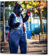 Banjo Beary In Pritchard Park Acrylic Print