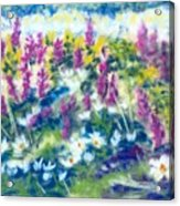 Dancing Daisies Acrylic Print