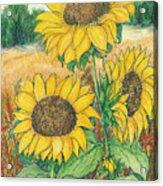 Dancing In The Sun 2  Acrylic Print