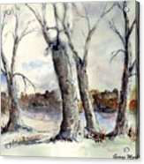 Dancing in Winter Acrylic Print