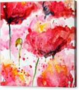 Dancing Poppies Galore Watercolor Acrylic Print