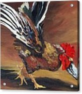Dancing Rooster  Acrylic Print