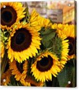 Dancing Sunflowers Acrylic Print