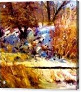 Dancing Winter Shadows Acrylic Print