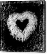 Dandelion Love Acrylic Print by Tamyra Ayles